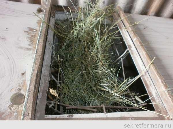 бункер под сено