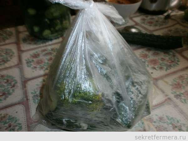 огурчики в пакетике