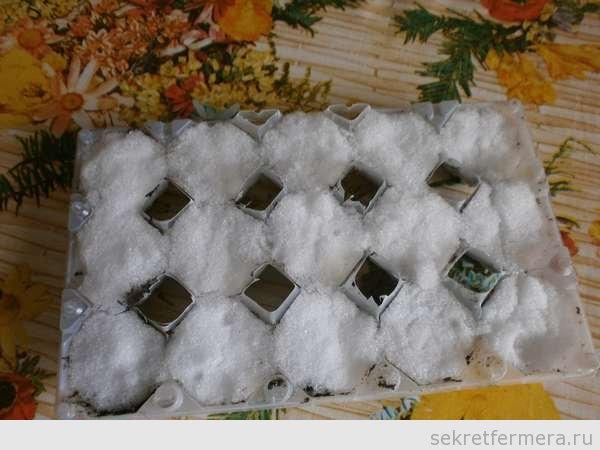 слой снега